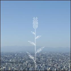 Kobukuro - Tsubomi