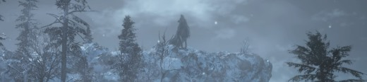 Dark Souls III: Ashes of Ariandel [DLC]
