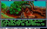 Screenshots Advanced Dungeons & Dragons: Champions of Krynn