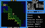 Screenshots Ultima IV: Quest of the Avatar