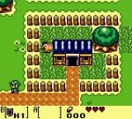 Screenshots The Legend of Zelda: Link's Awakening DX Poum poum poum, promenons-nous dans le village