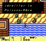 Screenshots The Legend of Zelda: Link's Awakening DX Rhouu rouhh rouhh...