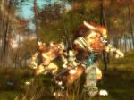 Screenshots Guild Wars: Eye of the North Les Charrs