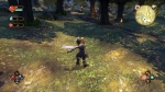 Screenshots Fable Anniversary