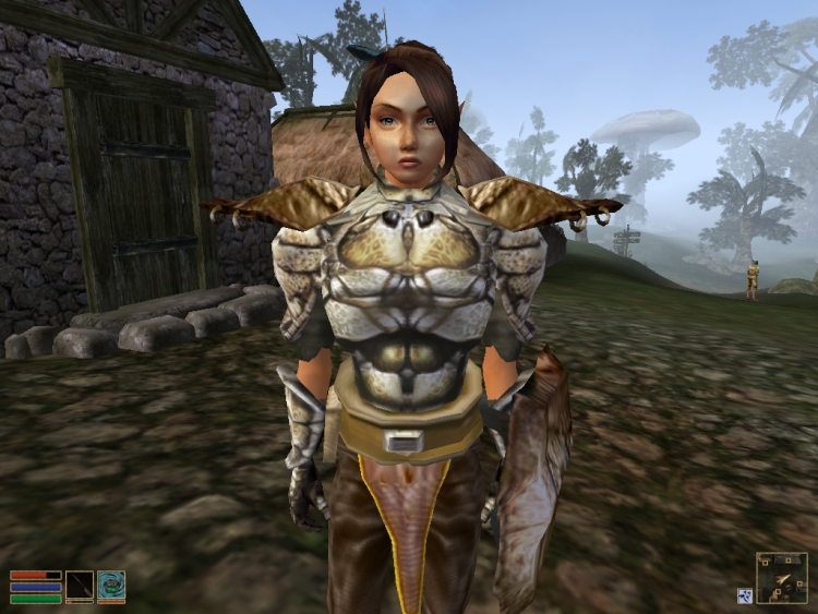 The Elder Scrolls III: Morrowind - Avec les mods de fans (disponibles