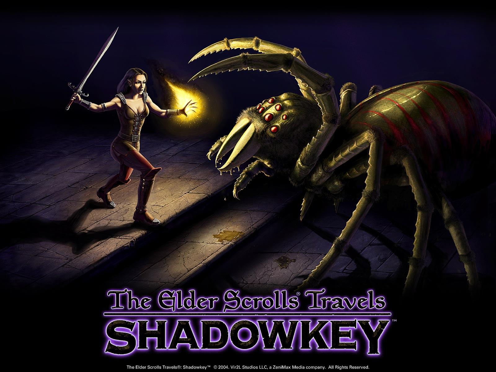 the elder scrolls travels shadowkey fiche rpg reviews
